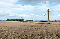 Wayleave power line across a fied - Lincolnshire, September