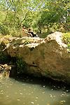 Ein Sarig in Jerusalem mountains