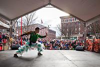 Martial Arts, Chinese Lunar New Year, Chinatown, Seattle, WA, USA.
