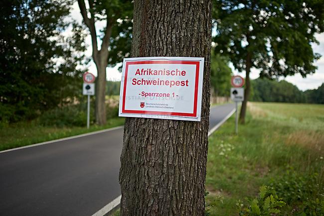 """Warnschild """"Afrikanische Schweinepest - Sperrzone 1"""" in Brandenburg der Naehe von Strausberg. Die sog. Afrikanische Schweinepest (lat. Pestis Africana Suum) verbreitet sich im Bundesland Brandenburg. Am Wochenende der 27. Kalenderwoche mussten ueber 200 Schweine getoetet werden, nachdem bei einer Schweinefarm und einem Privatbesitzer Tiere an der Afrikanischen Schweinepest erkrankt waren.<br /> 18.7.2021, Strausberg<br /> Copyright: Christian-Ditsch.de"""