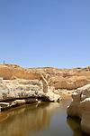 Zin waterholes in Wadi Zin