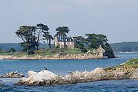 Europe/France/Bretagne/56/Morbihan/Golfe du Morbihan: l'Ile  Grand Veïzit et son manoir
