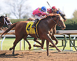 LEXINGTON, KY - APRIL 15:  #4 Top Billing wins the 8th Race at Keeneland, allowance optional claiming $62,500, on April 15, 2016 in Lexington, Kentucky. (Photo by Jessica Morgan/Eclipse Sportswire/Getty Images)