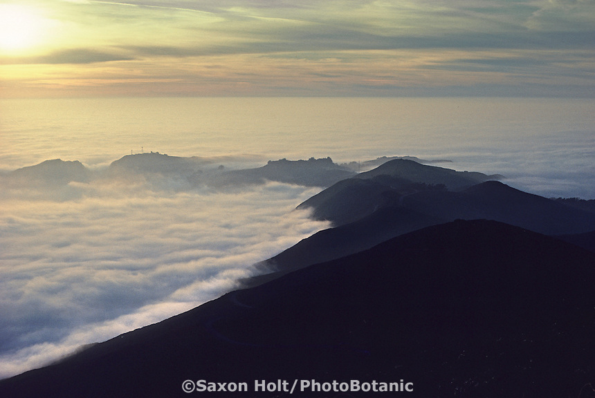 Sunset over fog, Marin Headlands