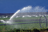 Irrigating a farm field
