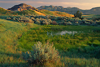 Prairie pond and sagebrush<br />