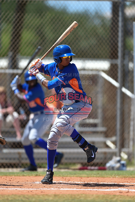 New York Mets Alfredo Reyes (1) during a minor league spring training game against the Miami Marlins on March 30, 2015 at the Roger Dean Complex in Jupiter, Florida.  (Mike Janes/Four Seam Images)