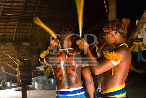 Xingu Indigenous Park, Mato Grosso State, Brazil. Aldeia Matipu (Matipu). Taquara Festival; men preparing each other with feather adornments. Snake design.