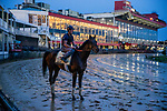 BALTIMORE, MD - MAY 18: Quip with trainer Rodolphe Brisset aboard completes final preparations for the Preakness Stakes at Pimlico Racecourse on May 18, 2018 in Baltimore, Maryland. (Photo by Alex Evers/Eclipse Sportswire/Getty Images)