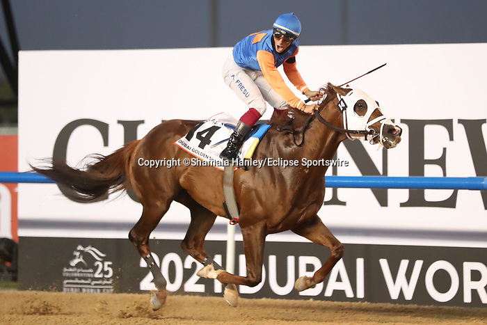 March 27, 2021: ZENDEN #14 ridden by Antonio Fresu wins The Group 1 Golden Shaheen for Carlos David  on Dubai World Cup Day, Meydan Racecourse, Dubai, UAE. Shamela Hanley/Eclipse Sportswire/CSM