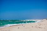 Madaket Beach, Nantucket, MA, USA