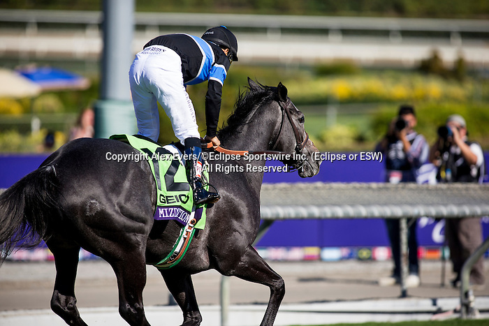 Mizdirecetion, ridden by Mike Smith wins the Breeders' Cup Turf Sprint on November 2, 2013 at Santa Anita Park in Arcadia, California during the 30th running of the Breeders' Cup.(Alex Evers/ Eclipse Sportswire)
