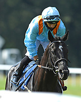 Maries Diamond ridden by Silvestre De Sousa goes down to the start of The AJN Steelstock Sovereign Stakes during Horse Racing at Salisbury Racecourse on 9th August 2020