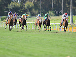 July 16, 2011.Horses in the stretch for the American Oaks Stakes, Nereid riden by Joseph Talamo, and Cambina riden by Martin Garcia finish in a dead heat at Hollywood Park, Inglewood, CA