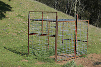Trap used to capture and remove wild boar, Sus scrofa, an invasive species in much of California. Mount Diablo State Park, California