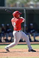 Los Angeles Angels outfielder Andrew Ray (12) during an Instructional League game against the Milwaukee Brewers on October 11, 2013 at Tempe Diablo Stadium Complex in Tempe, Arizona.  (Mike Janes/Four Seam Images)