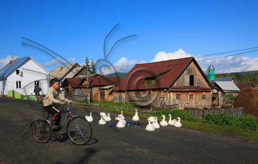 On the main street of Gadel-Gareyéro, the village children on bicycles play in front of the geese warming themselves in the sun.