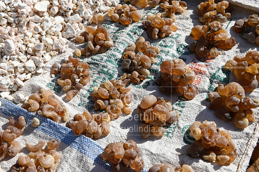 NIGER, Niamey, market, Baobab fruit and arabic gum, a tree resin from tree acacia senegal which is found in Sahel region, used in the food industry as a stabilizer, with EU E number E414 but it also has medical applications / Verkauf von Gummi arabicum und Baobab Frucht