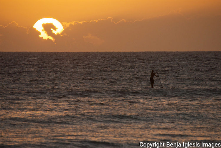 A lonely stands paddler enjpying the sunset at cove park maui hawaii.