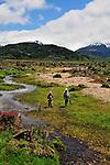 TRES VALLES Tremors  Spring Creek in Patagonia