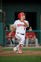 Harrisburg Senators designated hitter Austin Davidson (6) flies out during a game against the Erie SeaWolves on August 29, 2018 at FNB Field in Harrisburg, Pennsylvania.  Harrisburg defeated Erie 5-4.  (Mike Janes/Four Seam Images)