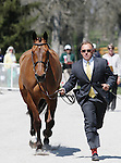 April 23, 2014: Ballynoe Castle RM and Bruce Davidson Jr. during the first horse inspection at the Rolex Three Day Event in Lexington, KY at the Kentucky Horse Park.  Candice Chavez/ESW/CSM