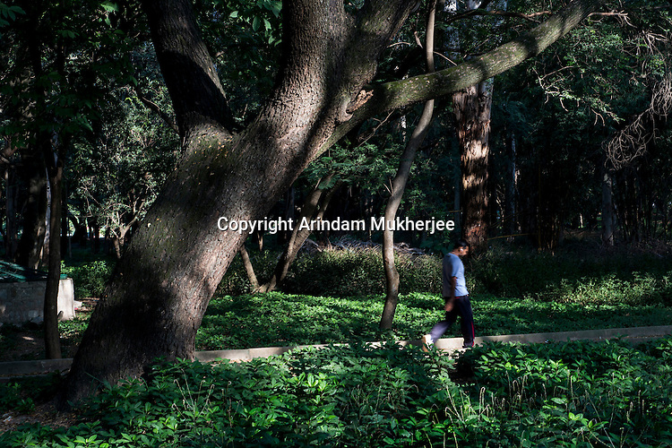 A morning walker in a park at Bangalore, India.