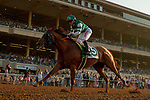 """DEL MAR, CA  AUGUST 18:  #5 Accelerate, ridden by Joel Rosario, wins the $1 Million TVG Pacific Classic (Grade l) """"Win and You're in Classic Division"""" on August 18, 2018 at Del Mar Thoroughbred Club in Del Mar, CA. (Photo by Casey Phillips/Eclipse Sportswire/Getty Images"""