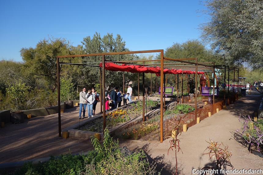 The Desert Botanical Garden, Phoenix, AZ, 2010-2011.The Center for Desert Living strives to sharpen and refine the image of Arizona's desert lifestyle. Leigh Kyle, RLA. Photo by Spurlock Poirier Landscape Architects.