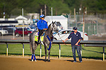 LOUISVILLE, KY - MAY 04: Mohayman gallops in preparation for the Kentucky Derby at Churchill Downs on May 04, 2016 in Louisville, Kentucky. (Photo by Zoe Metz/Eclipse Sportswire/Getty Images)
