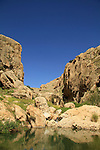 Judean desert, Ein Prat (Ein Fara) in Wadi Qelt