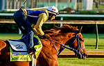 April 26, 2021: King Fury exercises in preparation for the Kentucky Derby at Churchill Downs on April 26, 2021 in Louisville, Kentucky. Scott Serio/Eclipse Sportswire/CSM