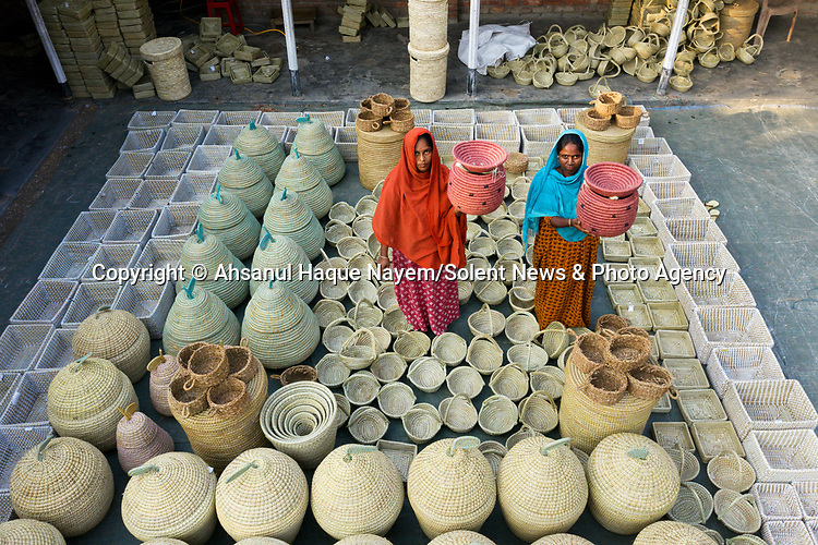 Hundreds of freshly handwoven baskets dry in the sun before being exported around the world.  Workers weave the baskets from Kans grass, typically making three to six each day of various shapes and sizes.<br /> <br /> Once finished they are left out in the sunlight for two or three days so that the moisture from the grass evaporates.  They are then shipped from Bogra, Bangladesh, to the likes of USA, Australia, Britain and elsewhere in Europe, usually selling for £8 to £20.<br /> <br /> Please byline: Ahsanul Haque Nayem/Solent News<br /> <br /> © Ahsanul Haque Nayem/Solent News & Photo Agency<br /> UK +44 (0) 2380 458800