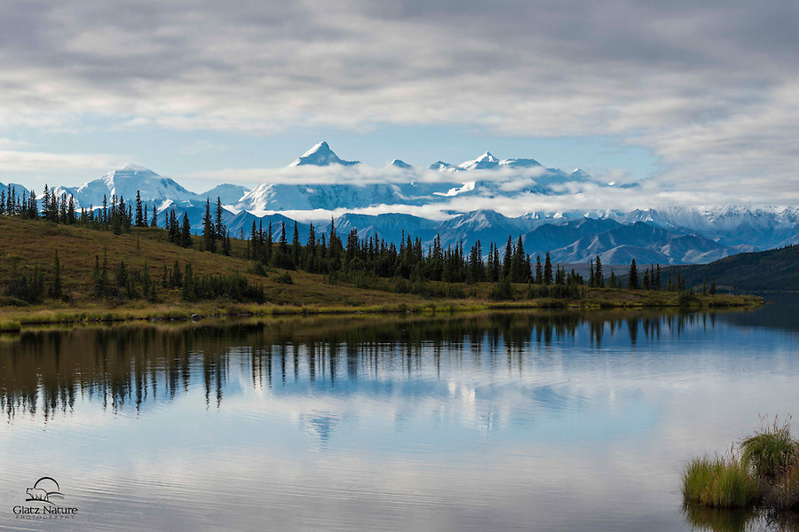 """It was a little too windy for the perfect reflection shot, but we were happy that """"The Mountain"""" emerged from the clouds while we were in this area of the park.  Denali is truly massive, dwarfing even the large peaks surrounding it."""