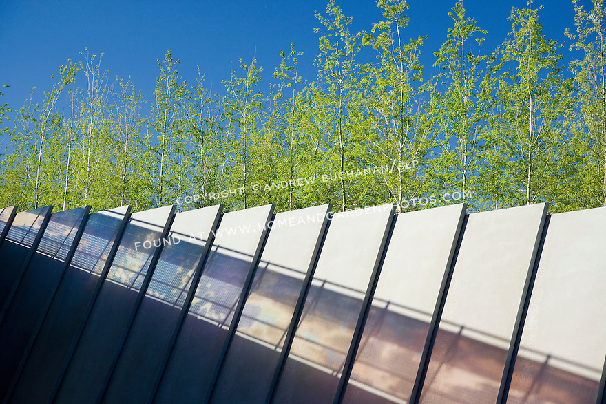 """More than 200,000 cubic yards of fill were brought to the Park site from a downtown construction project to raise the ground level far above the existing train tracks that bisected it.  These sculptural concrete slabs topped with the aspens of the Grove section of the Park support the embankment that is the wall of the train track right-of-way (just below the edge of the frame).  Seen in silhouette on the embankment's wall is the late afternoon sun passing through the glass wall of Teresita Fernåndez's, """"Seattle Cloud Cover"""" that forms the sky bridge over the tracks and connects the two portions of the Park -- city side and water side.  Nowhere is the intended meeting of plants, sky, and art more obvious.  SAM's Olympic Sculpture Park, Seattle, WA."""