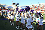 December 30, 2016: TCU showgirls performing on the sidelines in the second half of the AutoZone Liberty Bowl inside Liberty Bowl Memorial Stadium in Memphis, Tennessee. ©Justin Manning/Eclipse Sportswire/Cal Sport Media