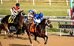 OZONE PARK, NEW YORK - DEC 2: Indulgent, #7, ridden by Luis Saez, wins the Go for Wand Handicap, at Aqueduct Racetrack, on December2, 2017 in Ozone Park, New York. ( Photo by Dan Heary/Eclipse Sportswire/Getty Images)