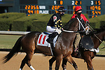 January 22, 2021: Believeinholidays (11) with jockey Florent Geroux before the fifth race at Oaklawn Racing Casino Resort in Hot Springs, Arkansas on January 22, 2021. Justin Manning/Eclipse Sportswire/CSM