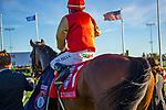 TORONT,CANADA-SEP 14: El Tormenta,ridden by Eurico da Silva, after winning the Woodbine Mile at Woodbine Race Track on September 14,2019 in Toronto,Ontario,Canada. Kaz Ishida/Eclipse Sportswire/CSM