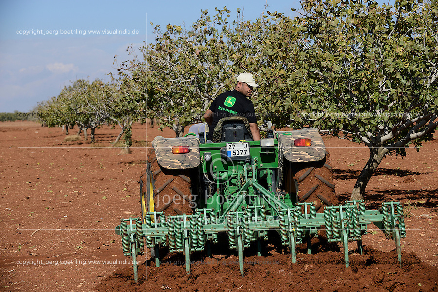 TURKEY, Nizip, farmer till soil between pistachio trees with John Deere tractor / TUERKEI, Nizip, Farmer pfluegt den Boden zwischen Pistazienbaeumen mit Traktor