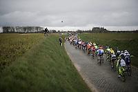 peloton hitting the Holleweg cobbles<br /> <br /> 71st Dwars door Vlaanderen (1.HC)