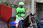 February 28, 2021: Going Good #1 , ridden by Florent Geroux in the Dixie Belle Stakes for trainer Brad H. Cox at Oaklawn Park in Hot Springs,  Arkansas.  Ted McClenning/Eclipse Sportswire/CSM