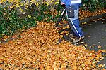 Cleaning the street, Strassenreinigung, Schaan, Liechtenstein,