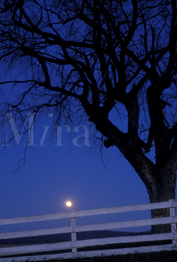 AJ3907, moon, lunar eclipse, Pennsylvania, Amish, Amish Country, Lancaster County, Pennsylvania Dutch Country, Lunar eclipse over a fence on an Amish farm at night in Lancaster County in the state of Pennsylvania.