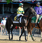 July 4, 2021: Three Technique, ridden by Manuel Franco, in the post parade prior to the 2021 running of the G2 John A. Nerud S. at Belmont Park in Elmont, NY. Sophie Shore/ESW/CSM