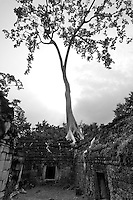 CAMBODIA 2007, BANTEY THOM TEMPLE, BLACK AND WHITE