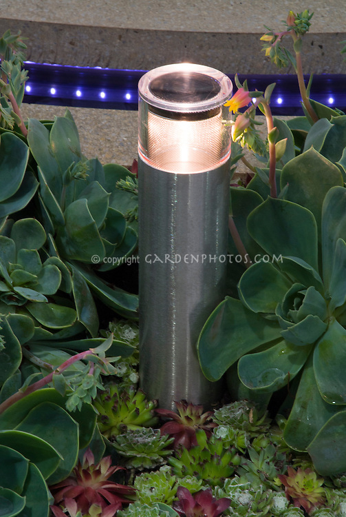 Circular patio edge with string of built-in blue lights, solar night lighting lamp lit, fleshy succulent ground cover plants Sempervivums hen & chicks