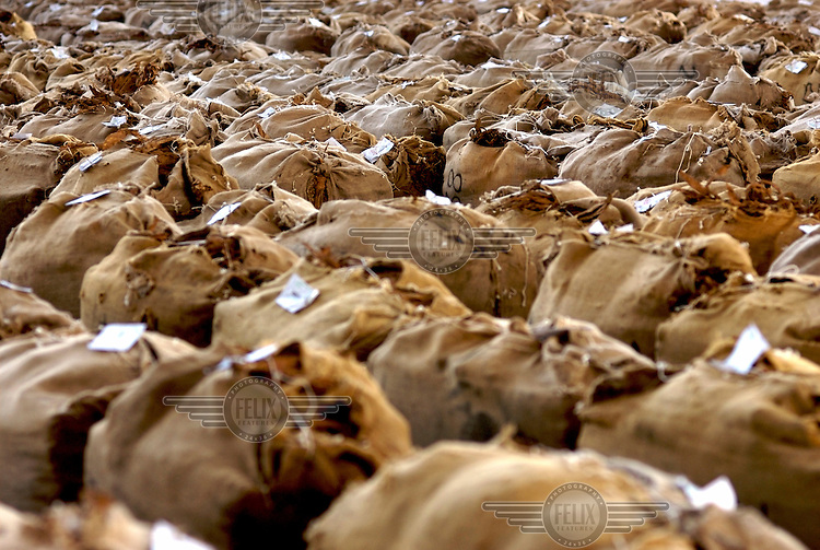 Sacks of tobacco wait to be sold at the auction centre in Blantyre. Tobacco is Malawi's largest industry and currently accounts for nearly 80 percent of the nation's export earnings. It is however in danger of causing serious damage to the country's environment through deforestation..
