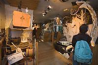 """Europe/France/Bretagne/56/Morbihan/Belle-Ile/ Pointe des Poulains : Détail du Musée  de Sarah Bernhardt  à la """"Villa des Cinq Parties du Monde"""""""