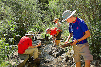Photo story of Philmont Scout Ranch in Cimarron, New Mexico, taken during a Boy Scout Troop backpack trip in the summer of 2013. Photo is part of a comprehensive picture package which shows in-depth photography of a BSA Ventures crew on a trek. In this photo BSA Ventures crew members work together to pan for gold in a stream in Black Mountain Camp in the backcountry of the Philmont Scout Ranch.   <br /> <br /> The  Photo by travel photograph: PatrickschneiderPhoto.com
